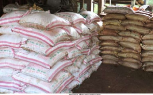 Photo of Ghana stockpiles sufficient fertilizer for 2020 crop season