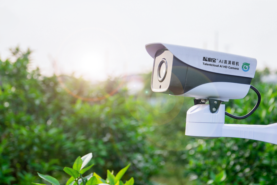 Photo of Smart agricultural company plants seeds for sustainable farming with Azure AI technology