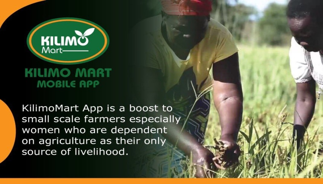 Photo of Small scale farmers launch online marketing platform