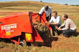 Photo of How to improve potato yields