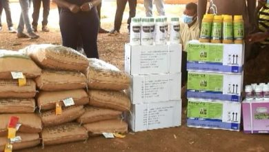 Photo of RMG Ghana bails farmers in Sissala out with subsidized fertilizer, hybrid seeds and weedicides