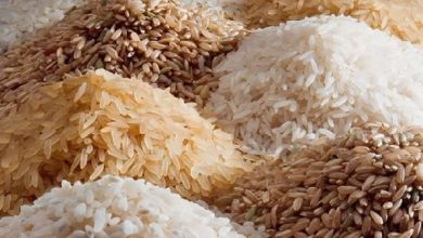 Photo of Grant us access to credit, seed inputs to avert possible rice shortage – PFAG to govt