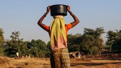 Photo of UN Women, Standard Bank programme provides leg up for women farmers