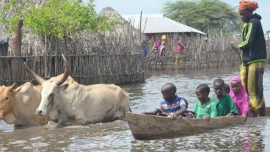 Photo of Fishers and farmers struggle as climate change in Kenya's Tana Delta