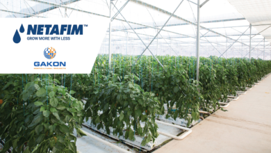 Photo of AGTECH LEADER NETAFIM TO ACQUIRE  DUTCH GREENHOUSE COMPANY GAKON  HORTICULTURAL PROJECTS
