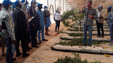 Photo of Israel woos Ghanaian companies with advanced agric technology