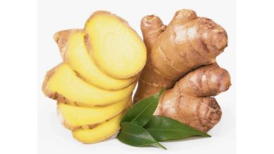 Photo of SMEs digest: New record as youth farmers await 146 tonnes of ginger