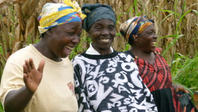 Photo of Zimbabwe: Plans Afoot to Boost Women Participation in Agriculture