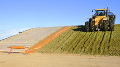 Photo of BETTER SILAGE FOR AFRICA.