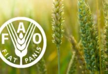 Photo of Irrigation farming: FAO provides $350,000 technical support for Nigeria