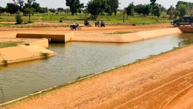 Photo of Herders lament, farmers excited as Nigerian government completes irrigation project
