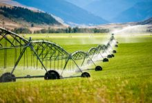 Photo of Only 88,950 out of 3.4 million hectares irrigated, agric outputs suffer