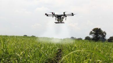 Photo of Expert Harps on Digital Smart Farming Solutions to Boost Food Production
