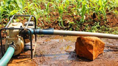 Photo of MADAGASCAR: The World Bank grants $40 million for irrigation development