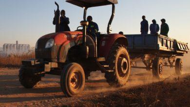 Photo of Zimbabwe: Summer Cropping Preps Intensified
