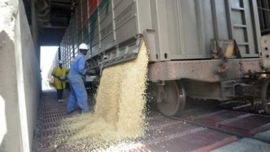 Photo of Kenya cereal producers see red over Dar imports