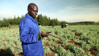 Photo of New initiative seeks to equip farmers with digital skills