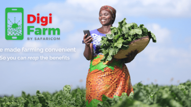 Photo of NCPB partners with Safaricom's integrated mobile platform DigiFarm to enable farmers access post-harvest services