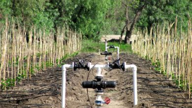Photo of ETHIOPIA: Israel's Water Ways to supply modern irrigation systems