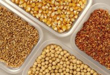 Photo of Rwanda Will No Longer Import Maize, Wheat and Soybean Seeds