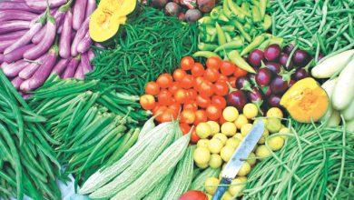 Photo of PfFJs benefits more than 400,000 farmers in Bono Region – MoFA