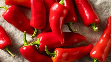 Photo of In Burundi's hills, red hot pepper leads to a farming revolution