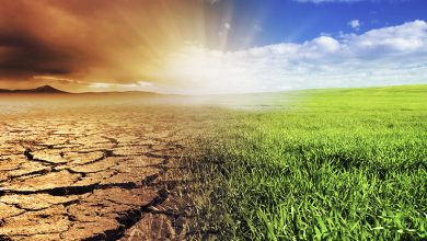 Photo of Support grows for agriculture climate initiative