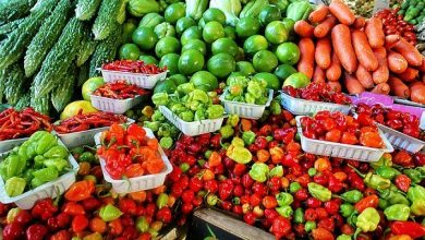 Photo of Maximising Nigeria's Opportunities for Agricultural Exports