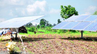 Photo of UGANDA: Nexus Green to install solar irrigation systems at 687 sites